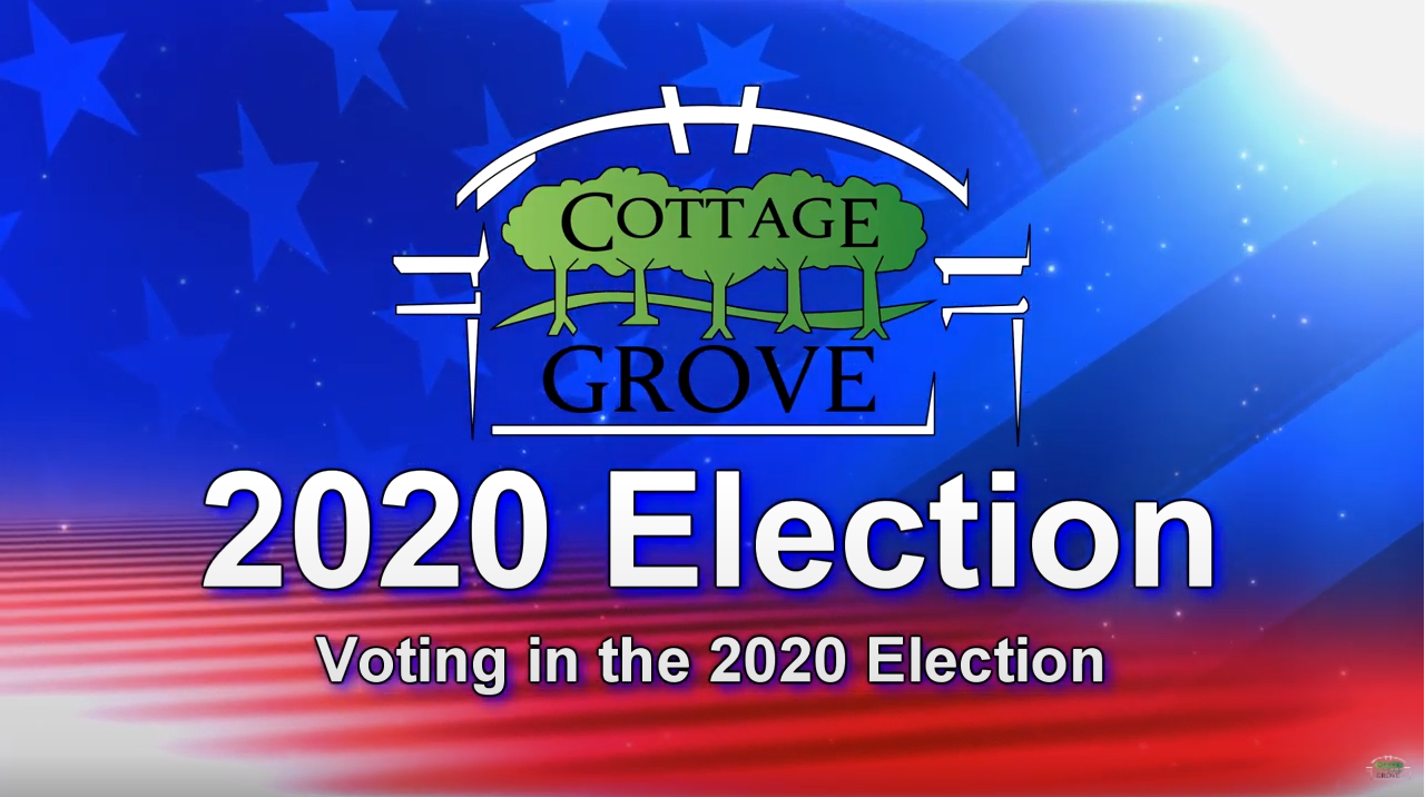 Election 2020 - Voting in the 2020 Election